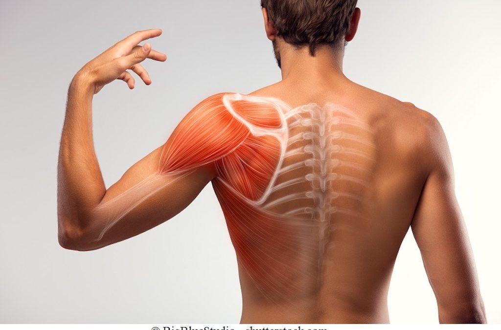 Borsite alla spalla