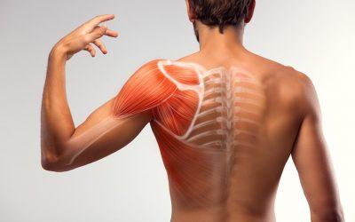 Borsite alla Spalla: la Causa e la FisioTerapia