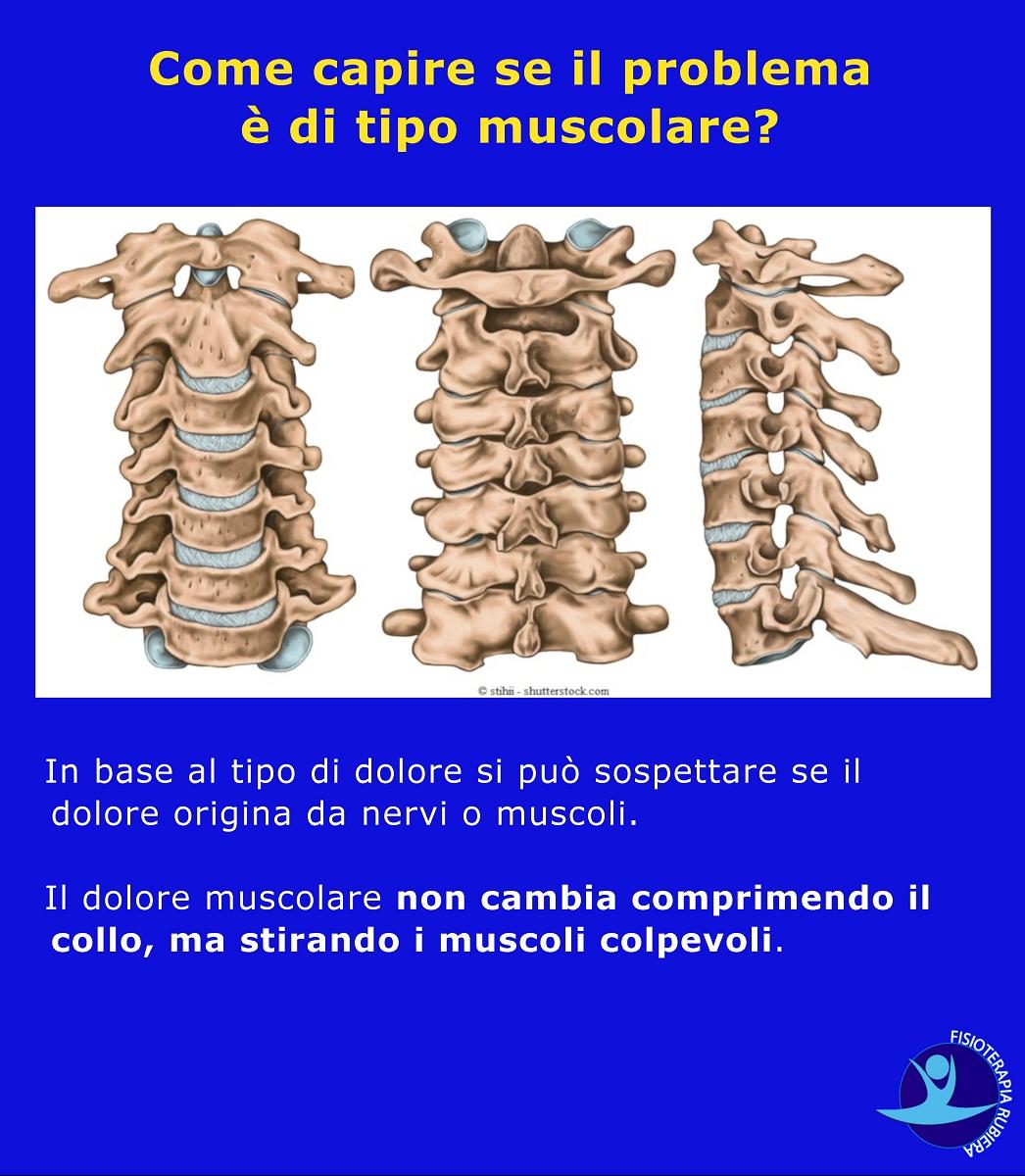 capire-se-il-problema-è-di-tipo-muscolare