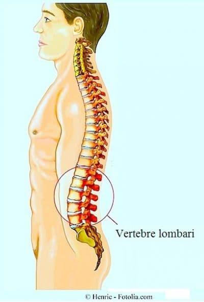Colonna vertebrale,vertebre lombari