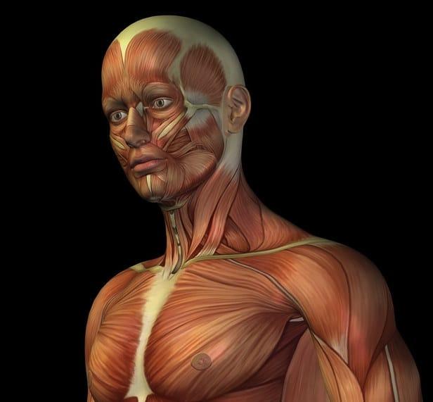 Ernia di una vertebra cervicale trattamenti nazionali