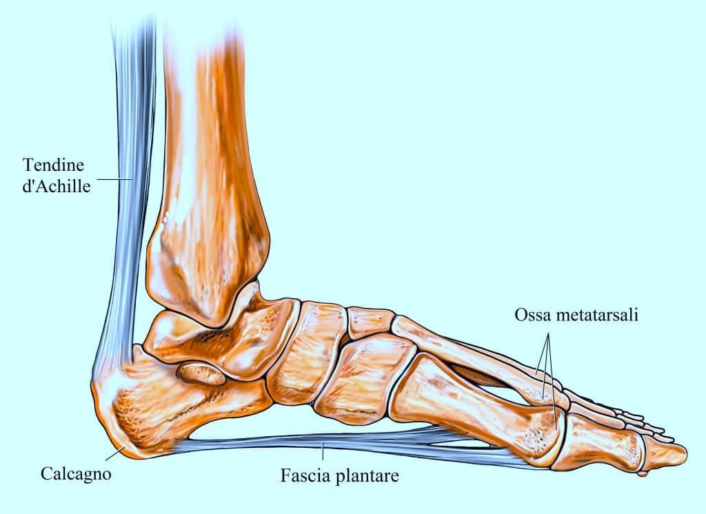 Favoloso Dolore al piede, lato esterno o interno, al tallone, cause e terapia FC78
