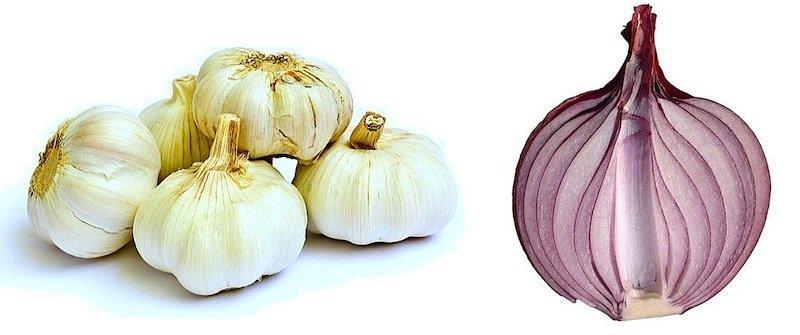 aglio,cipolla,dieta,alimentazione,allergia,rinite,allergica,febbre,fieno