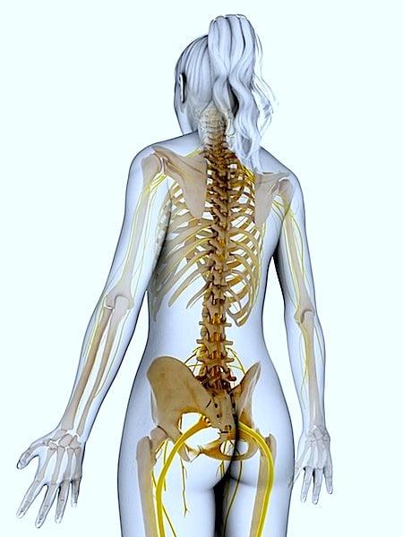 nervi,dolore, anca, sciatico,corsa,seduto,cammino,mattina