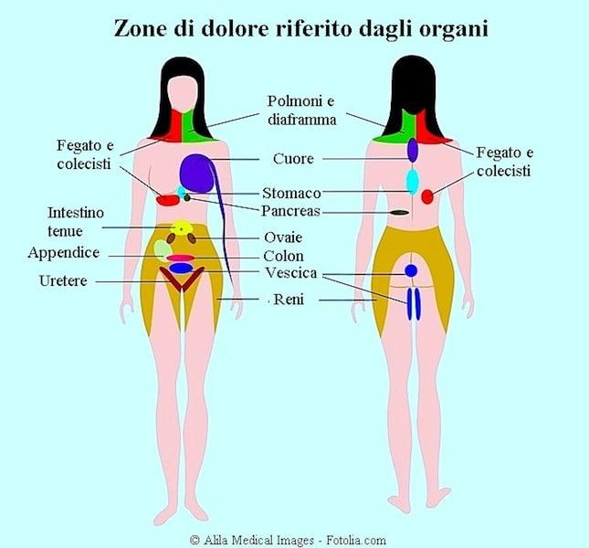 A quello che malattie interne il dorso può fare male