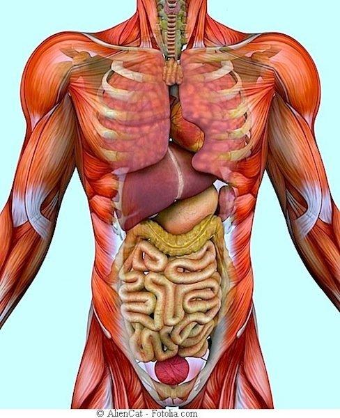 Anestetizzare la spina dorsale osteochondrosis
