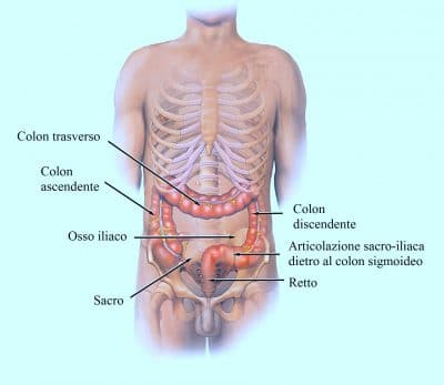 Meteorismo intestinale flatulenza cause sintomi e rimedi naturali - Sensazione di bagnato prima del ciclo ...