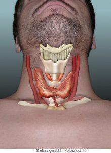 Ipotiroidismo - terapia