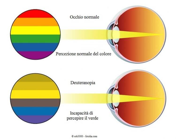 deuteranopia, colore, verde, incapacità di percepire