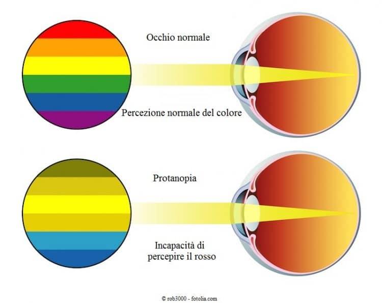 Protanopia, colore, rosso, incapacità di percepire