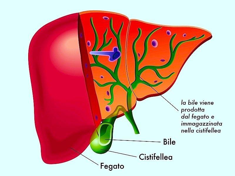 Ittero,fegato,bile,bilirubina