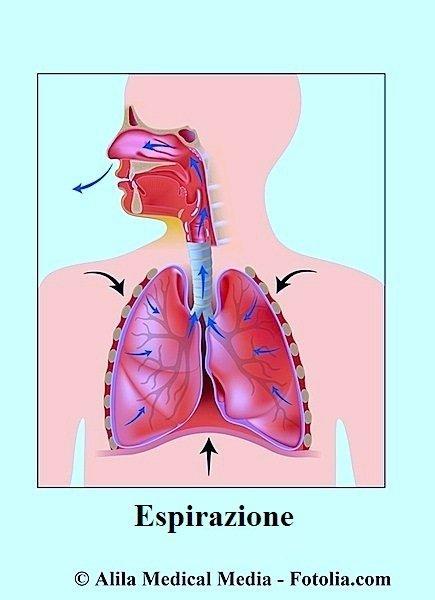 Espirazione,aria,polmoni