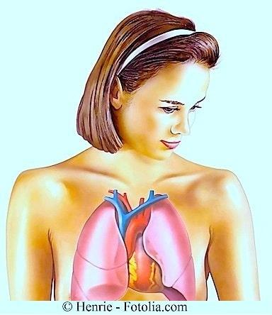 Polmoni,ragazza,anatomia