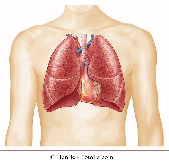 polmone,polmonite,dolore toracico