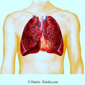 Fumare,fumatore,polmone