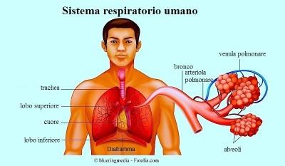 Edema polmonare acuto