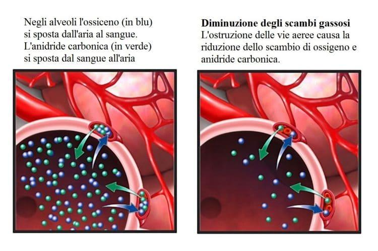 Scambi di ossigeno,anidride carbonica