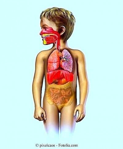 Rimedi per la tosse nei bambini