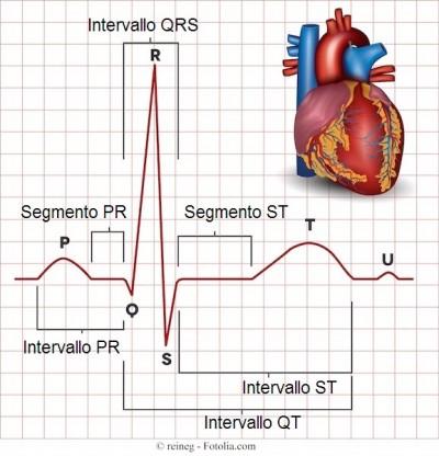 Elettrocardiogramma o ECG