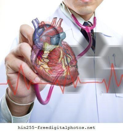 Medico,cardiologo