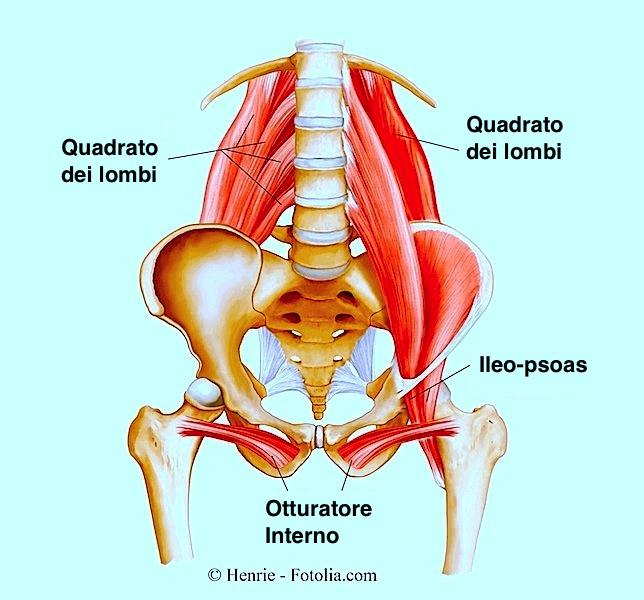 Necrosis di nodo di gemorroidalny