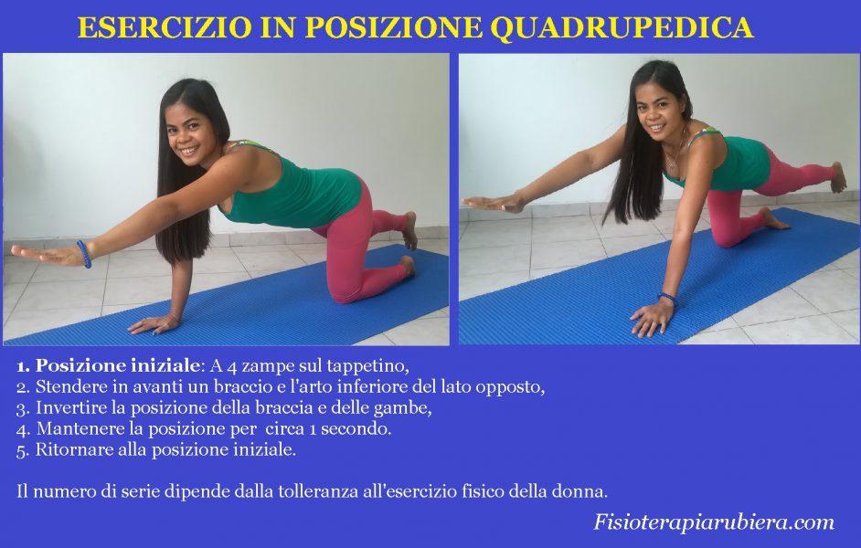 eserizio-posizione-quadrupedica