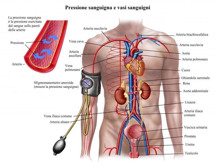 Pressione bassa,sintomi