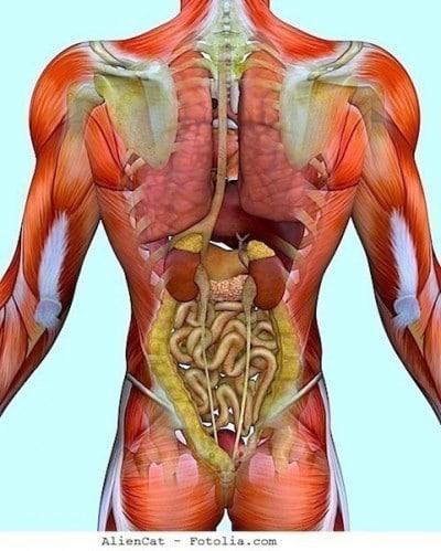 Dolori in reparto di petto di una spina dorsale a scoliosis