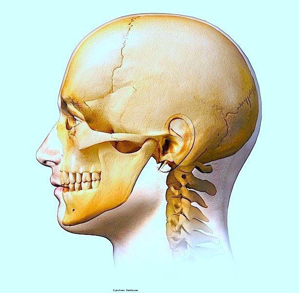 Dolore alla mandibola,cranio,di fianco