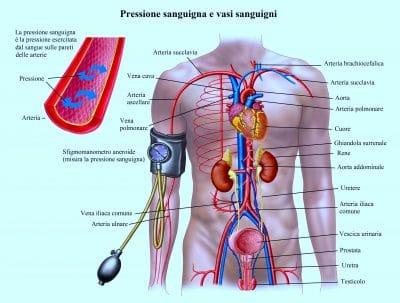 Pressione alta,ipertensione