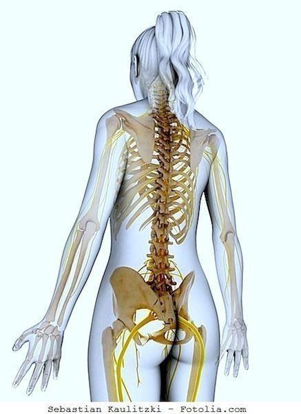 Sclerosi multipla,esami,nervi,midollo
