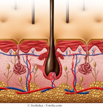 Segni di un fungo di pelle di unghie
