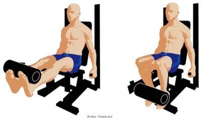 Dimagrire le cosce,leg extension,quadricipite