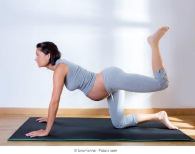 Sollevamento,gamba,4 zampe,gravidanza