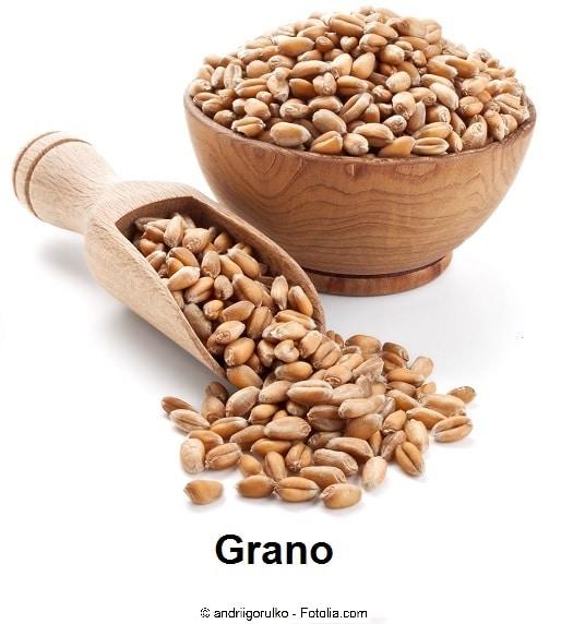 grano,vitamina b1,tiamina