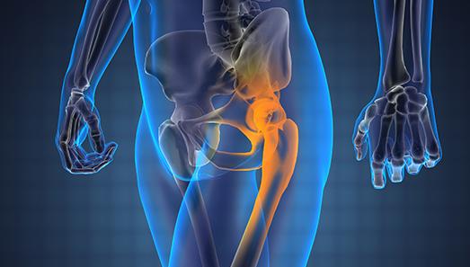 Articolazione del'anca e del ginocchio