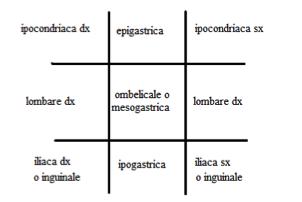 schema1