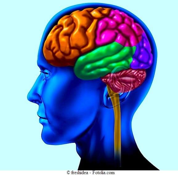 Dolore ai nervi,cervello
