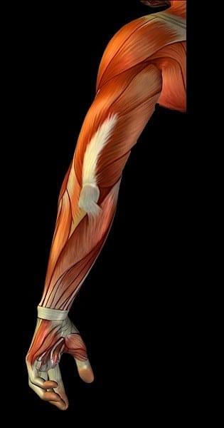 dolore-al-braccio