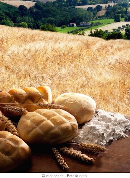 Pane,pasta,frumento,glutine