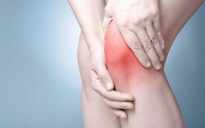 Plica sinoviale del ginocchio