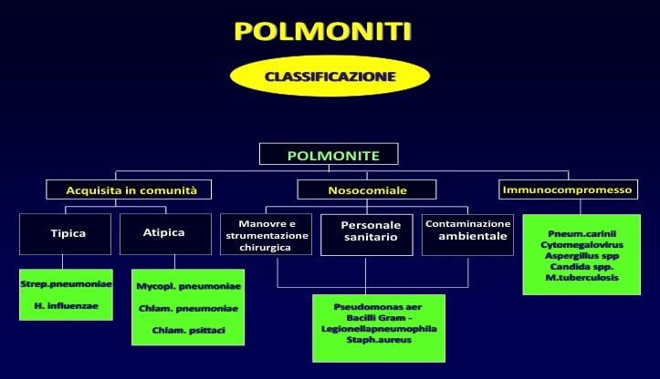 classificazione,polmonite,comunita,nosocomiale,immunocompromesso