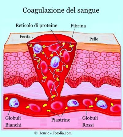 Lesioni cutanee