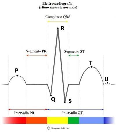 Elettrocardiogramma-segmento-intervallo