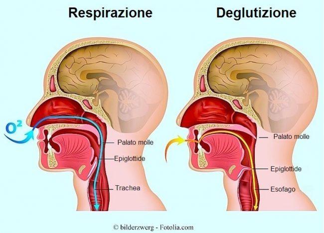 deglutizione-respirazione-palato