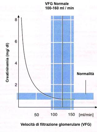 velocità-filtrazione-glomerulare