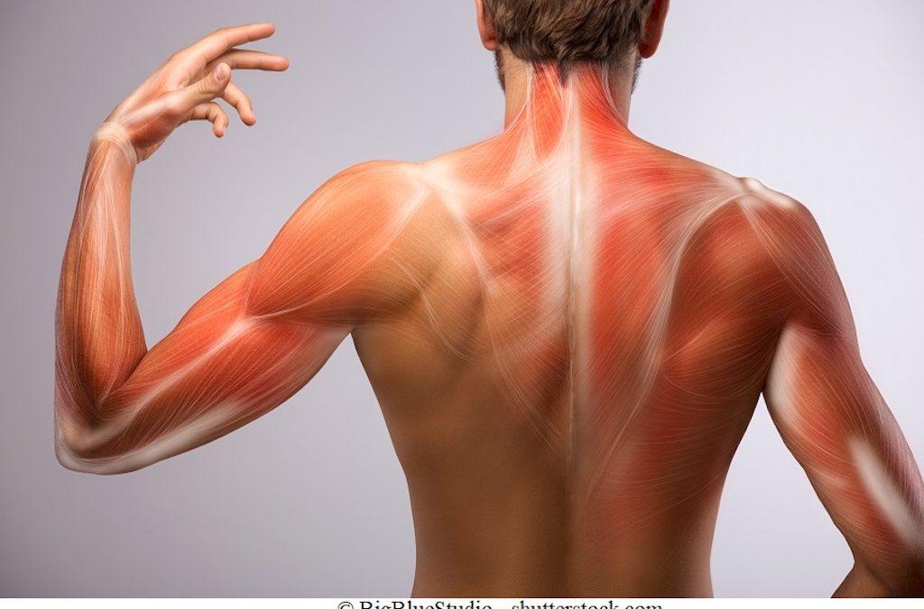 Cos'è l'artrite reumatoide giovanile e quali terapie sono efficaci