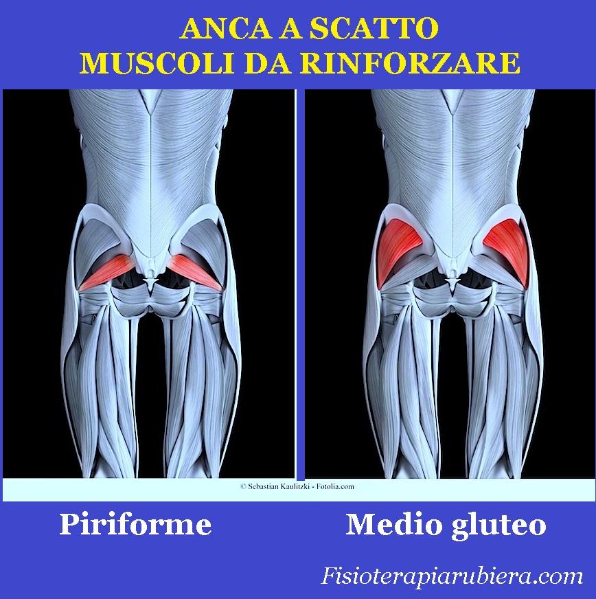anca-a-scatto, muscoli-da-rinforzare