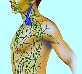 Linfonodi del collo ingrossati