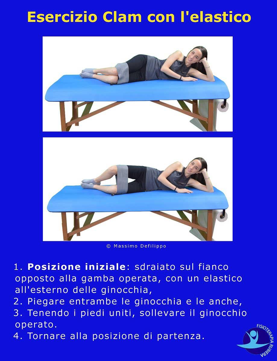 Esercizio-Clam-elastico